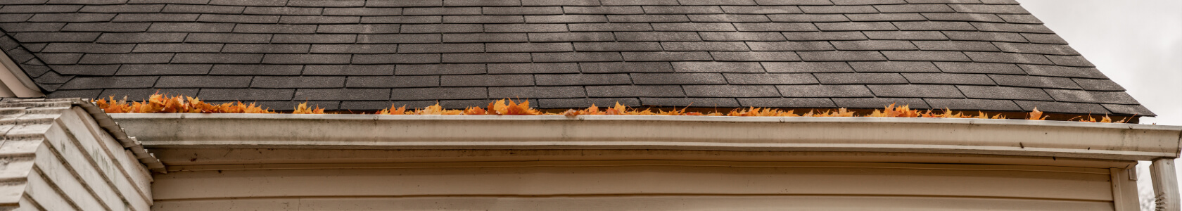 fall leaves fill a roof gutter