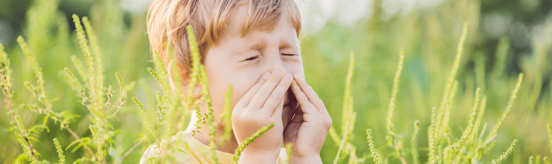 kid sneezing with ragweed around him