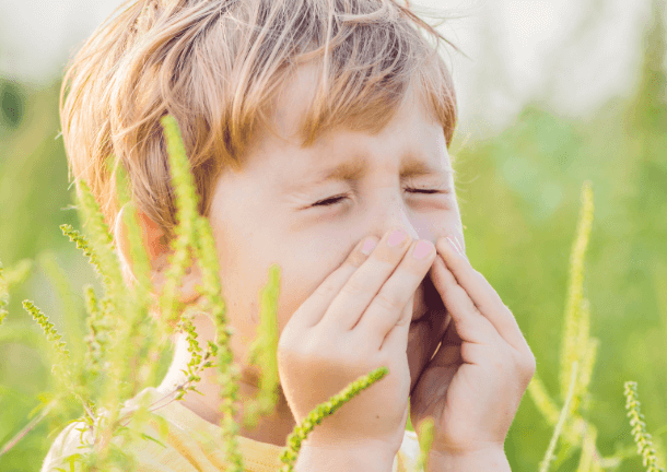 kid sneezing with ragweed around him