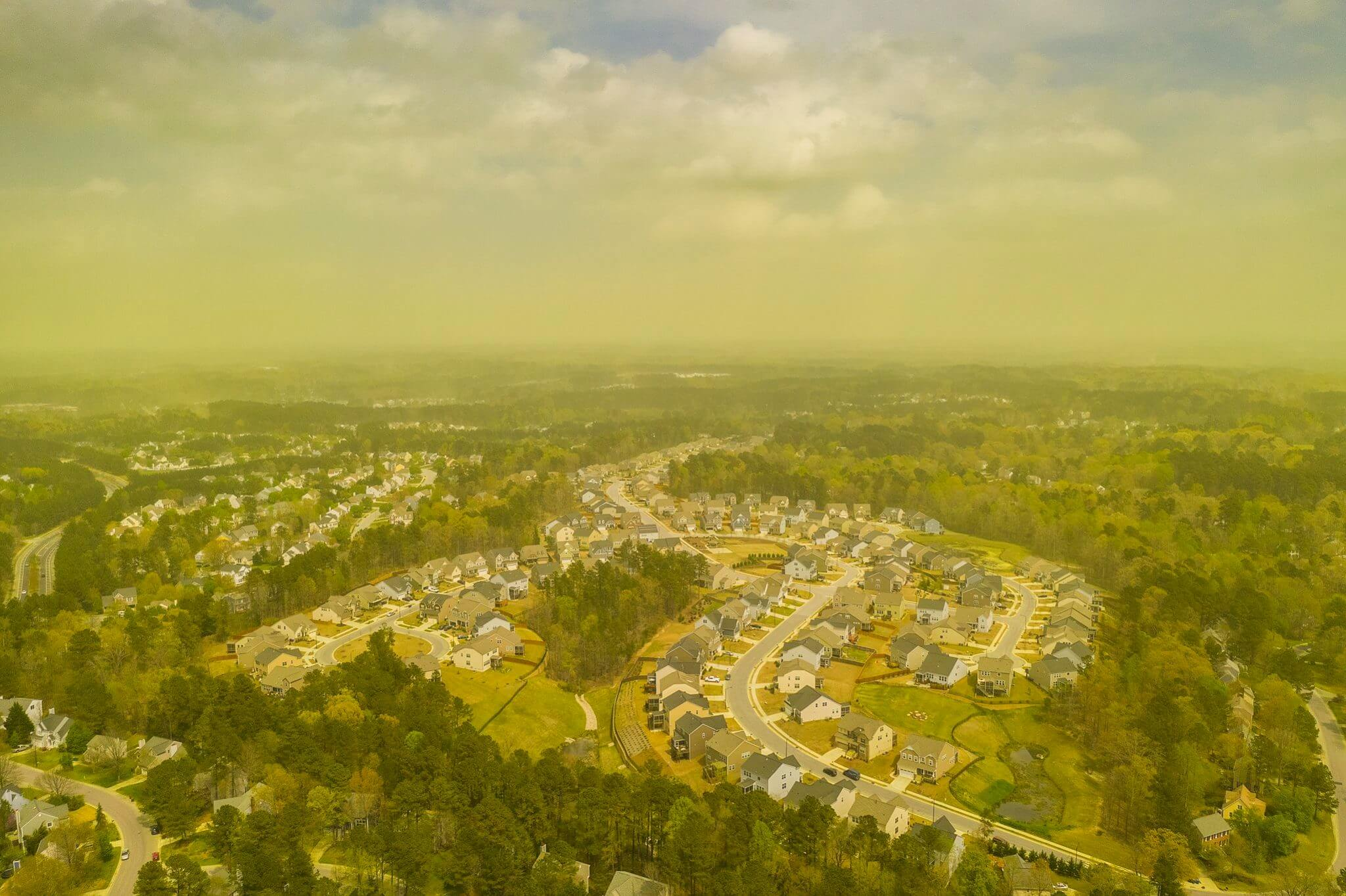 durham sky is haunted by a cloud of pollen