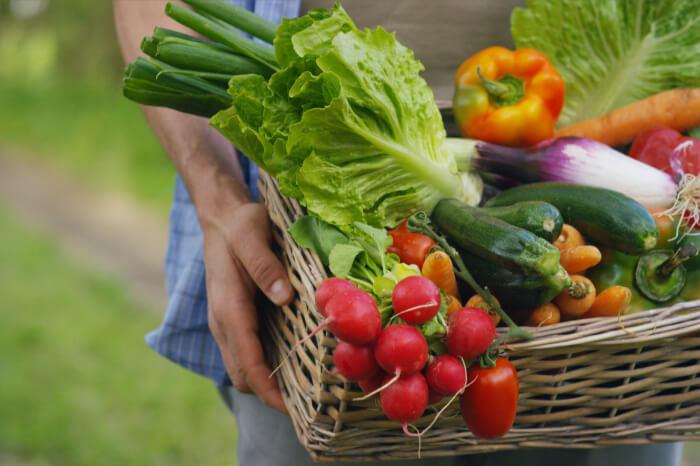 how to start gardening simplified